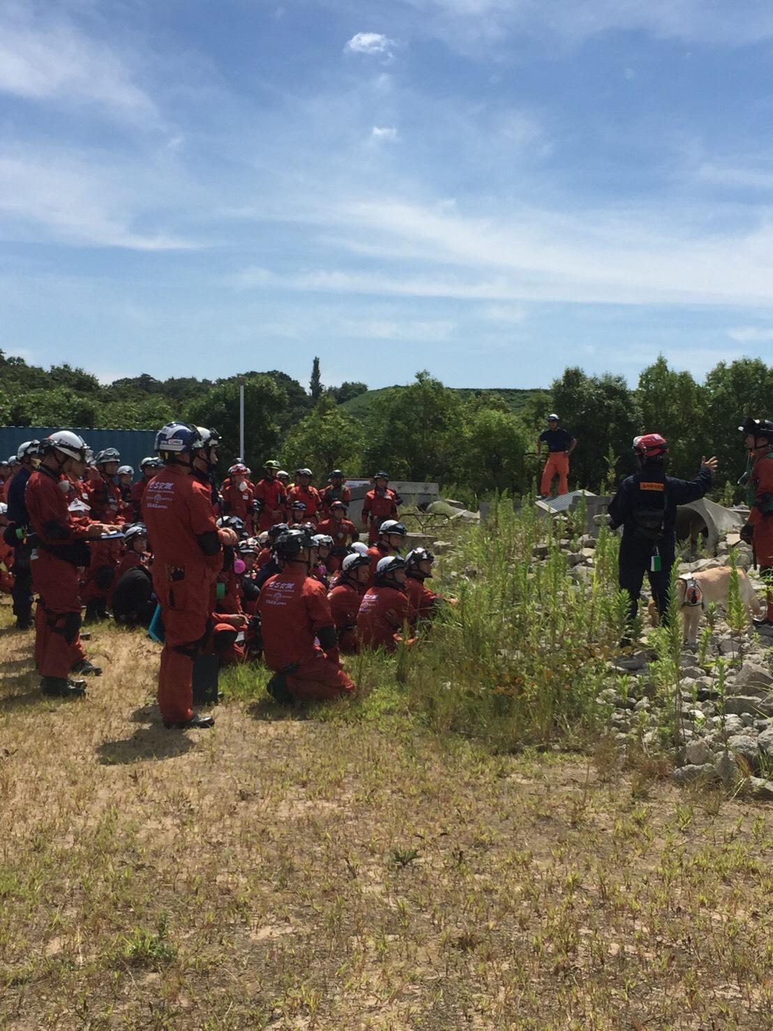 阪神救助犬協会|捜索災害救助犬育成・派遣・訓練活動